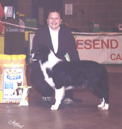 Charley Reserve Best Of Breed